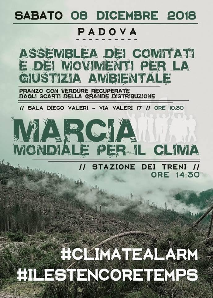 Marcia Clima Padova