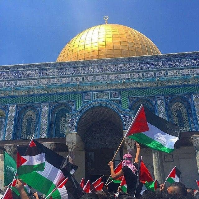 https://www.globalproject.info/public/resources/images/max/Palestina_6.jpg