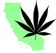 Marijuana California