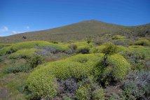 patagonia paesaggio